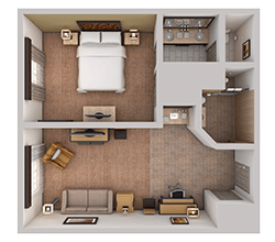 Accessible Suite with Roll-in Shower - Top Down View